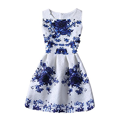 ZAY Womens White Contrast Blue Porcelain Print Flare Sleeveless Vintage Floral Dress Asian