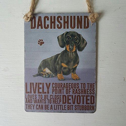Targa decorativa da appendere, motivo cane bassotto, con scritte in inglese, stile rétro, in metallo, di piccole dimensioni, 6,5 x 9 cm stile rétro Original Sign Company