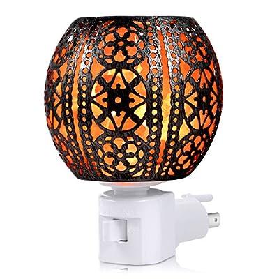 Sunnest Himalayan Salt Lamp, Natural Himalayan Salt Night Light in Lantern Design Crystal Salt Wall Light with 2 Bulbs and Wall Plug for Decoration and Lighting