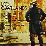 Los Gavilanes