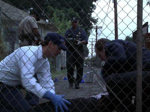 DVD : A Bullet Runs Through It, Part 1