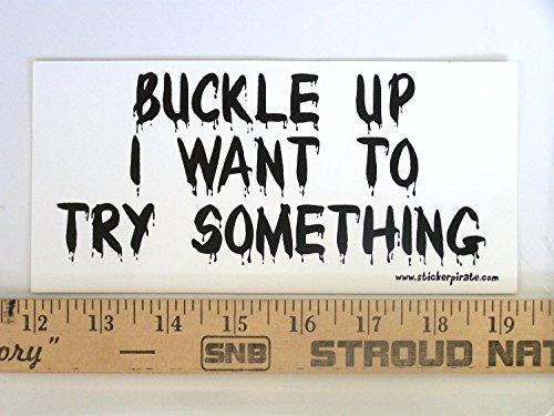 [해외]버클 업 그레 이드 오프로드 범퍼 스티커 데칼/Buckle Up I Want To Try Something Offroad Bumper Sticker   Decal