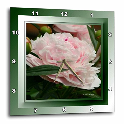3dRose dpp_26655_1 Pink Peonies Flower Wall Clock, 10 by 10-Inch (Clock Wall Peonies Decorative)