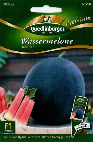 Wassermelone Red Star F1