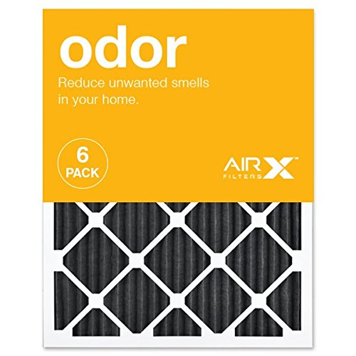 AIRx ODOR 20x25x1 MERV 8 Carbon Pleated Air Filter - Made in the USA - Box of 6 (Best Air In Usa)