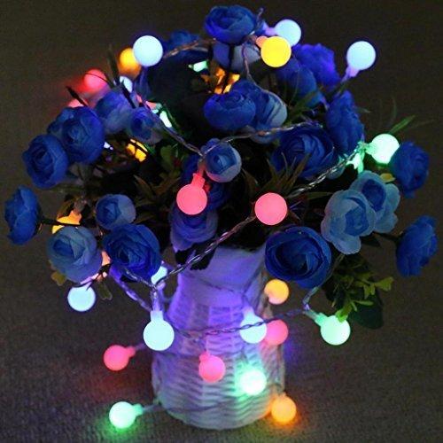 (Neretva Globe String Light,33ft 80 LED Waterproof Ball Lights,Dailyart LED Starry Light Fairy Light for Garden,Wedding,Xmas Party,Patio Garden, Party, Xmas Tree, Wedding Decoration)