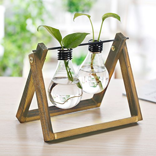 Glass Light Bulb Design Flower Vases with Rustic Wood & Metal Swivel Stand, Decorative Water (Metal Ivy Design)