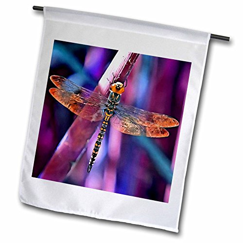 Taiche - Acrylic Painting - Dragonfly - Dragonfly In Orange and Blue - 12 x 18 inch Garden Flag (fl_245545_1) (Streamer Gossamer)