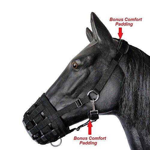 Pony Grazing - Prairie Horse Supply Deluxe Comfort Lined Grazing Muzzle, Heavy Duty Waffle Neoprene with Chin and Neck Pads, (Pony)