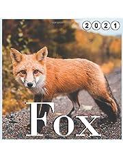 Fox: 2021 wall & Office Calendar 16 Monthe