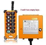 NEWTRY 12V Wireless Crane Remote Control Industrial Industrial Channel Hoist Crane Transmitter Receiver (+ DC12V Receiver)