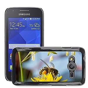 Etui Housse Coque de Protection Cover Rigide pour // M00133829 Abeja Recoge Miel Miel de abeja // Samsung Galaxy Ace4 / Galaxy Ace 4 LTE / SM-G313F