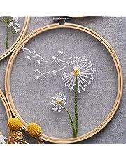 Europees mesh borduurwerk, borduursets Diy borduurwerk voor beginners DIY huisdecoratie, DIY bloemen schilderen Volledige handwerk Borduurpakketten, Borduur startpakket -