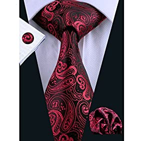 Hi-Tie New Fashion Woven Silk Paisley Tie Set for Men