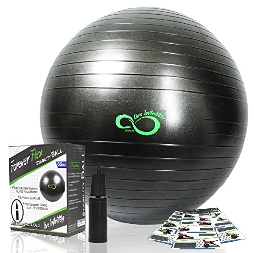 Exercise-Ball-Professional-Grade-Exercise-Equipment-Anti-Burst-Tested-with-Hand-Pump-Supports-2200lbs-Includes-Workout-Guide-Access-55cm65cm75cm85cm-Balance-Balls