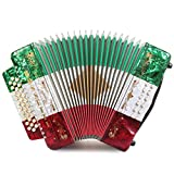 Rossetti 3112 FBbEb FA 31 Treble 12 Bass Button Accordion (Tri Color - RWG)