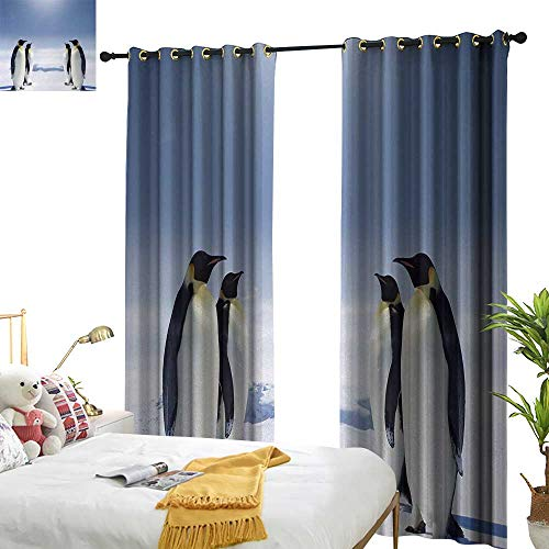 Davishouse Sea Animals Simple Curtain Two Pairs of Penguins Facing Each Other at South Sunny Antarctica Privacy Protection 97