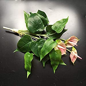 ShineBear Anthurium Bouquet Anthurium with Leave Root Calla Real Touch Wedding Display Flower Artificial Home Flower Wholesale - (Color: 1 Bouquet, Size: 45cm) 75