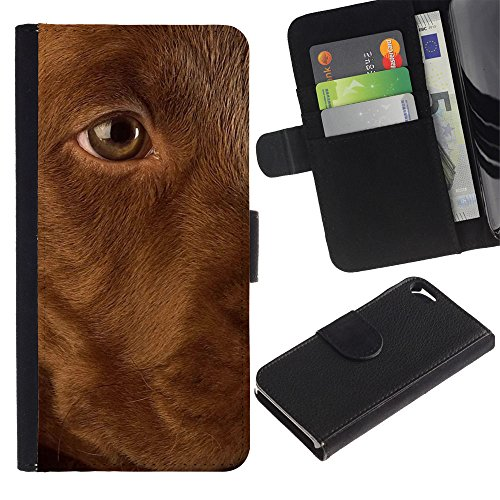 OMEGA Case / Apple Iphone 5 / 5S / golden Labrador retriever dog puppy / Cuir PU Portefeuille Coverture Shell Armure Coque Coq Cas Etui Housse Case Cover Wallet Credit Card