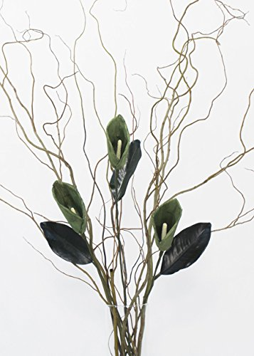 GreenFloralCrafts Curly Willow and Green Calla Lilies (Vase Not Included)