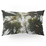 Society6 Muir Woods, California Pillow Sham King (20'' x 36'') Set of 2