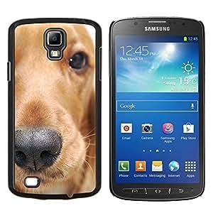 TECHCASE---Cubierta de la caja de protección para la piel dura ** Samsung Galaxy S4 Active i9295 ** --Golden Retriever Perro Animal Pet