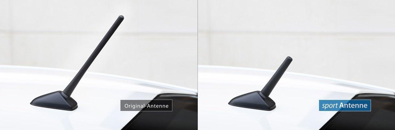 NIQ Antena de repuesto para coche AM/FM con rosca M5 + M6