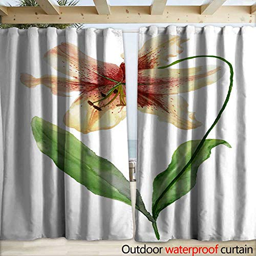 warmfamily Drape for Pergola Curtain Beautiful Tiger Lily Flower on a stem with Green Leaves Watercolor Painting Floral Illustration Hand Painted Isolated on White Background Drapery W120 x L108 (Tiger Drapes Lily)