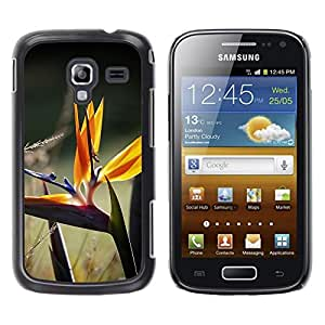 Caucho caso de Shell duro de la cubierta de accesorios de protección BY RAYDREAMMM - Samsung Galaxy Ace 2 I8160 Ace II X S7560M - cvetok travinki makro