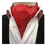 Secdtie Mens Paisley Floral Silk Cravat Ties Jacquard Woven Ascot Perfect Gift