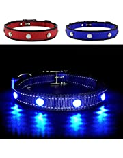MASBRILL Light Up Dog Collar, LED Safety Collar with USB Rechargeable Super Bright Dog Flashing Collar with 100% Waterproof, 4 Colors with 3 Sizes for Small Medium Large Dogs.