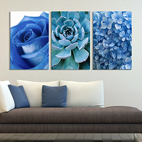 3 Panel Blue Rose Succulent Plant and Small Blue Flowers Gallery x 3 Panels