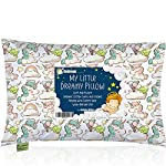 Tula Baby Pillow Breathable Hypoallergenic Mesh Cover and Cotton Pillowcase, Washable 13 x 9 Inches, Blue