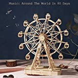 Rolife 3D Wooden Puzzles Ferris Wheel Music Box