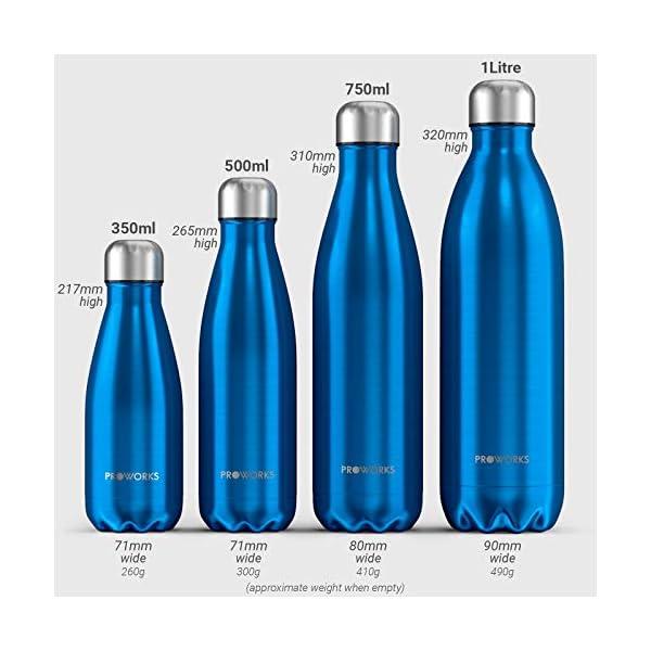 Proworks Bottiglia Acqua in Acciaio Inox, Senza BPA Vuoto Isolato Borraccia Termica in Metallo per Bevande Calde per 12 Ore & Fredde 24 Ore, Borraccia Sport, Lavoro e Palestra - 350ml/500ml/750ml/1L 6 spesavip