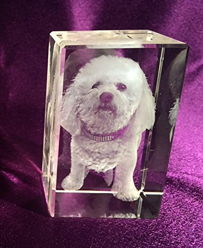 3d Pet Crystal Tower Memorial. Made from pure optic crystal, this is the perfect way to keep your best friend near you always. Comes with an LED base that beautifully lights the 3d image.