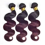 Ruiyu 7A Grade Ombre Brazilian Virgin Hair 3 Bundles Body Wave 2 Tones Human Hair Weave Bundles 12 Inches #1b-99j Color Pack of 3