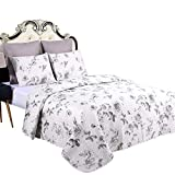 Jml Quilt Set - Queen Size Quilt Sets with Shams - 3 Pieces - All Season Lightweight Soft and Hypoallergenic Printed Pattern Bedding Bedspread Coverlet Set