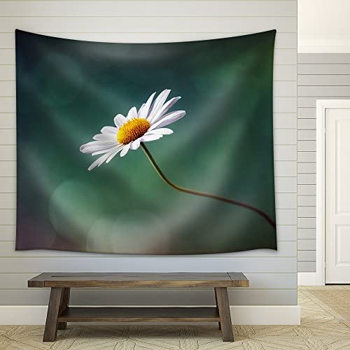 Daisy or Camomile Isolated Nature Background Fabric Wall