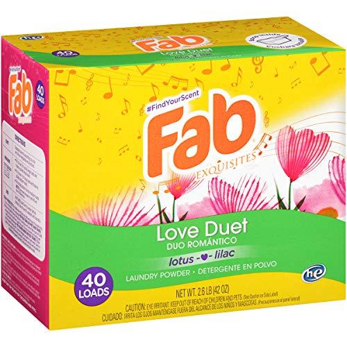 Fab Love Duet Powder Laundry Detergent (2.6 lbs)