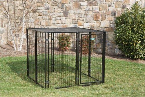 Petsafe  In  Dog Kennel Reviews