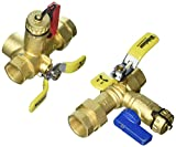 Webstone 44443WPR-LF 3/4'' IPS Isolator EXP E2 Tankless Water Heater Service Valve Kit with Clean Brass Construction