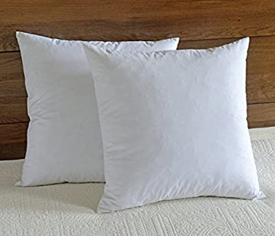 "downluxe 95% Feather 5% Down ,100% Cotton Fabric, 12""x20"" Oblong Pillow Insert,Set of 2,White"