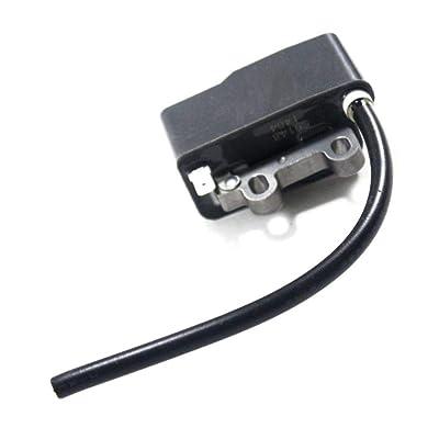 Echo A411000131 Ignition Coil: Automotive