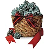 Fireplace Color Cones, Festive Fun Rainbow Flame Changing Pine Cones, Fire Pit Campfire Hearth Wood Burning Accessories for Holidays or Anytime - 1 LB Cones in Gift Basket
