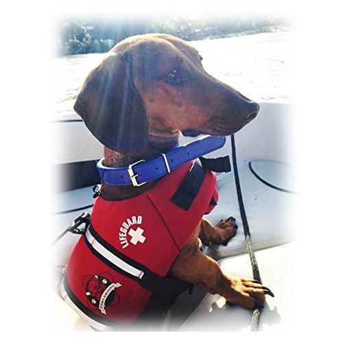 Jacket Pet Dog - 8