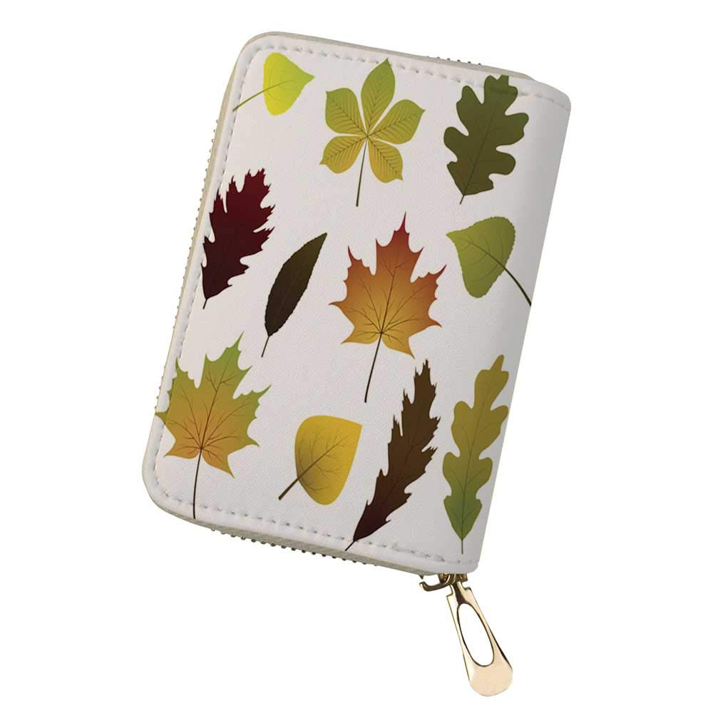 Credit Card Holder Wallets Vector of November for Ladies Girls//Gift Box