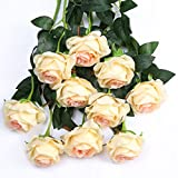 Luyue Artificial Silk Rose Flower Bouquet Wedding Party Home Decor, Pack of 10 (Style 1-Champagne)