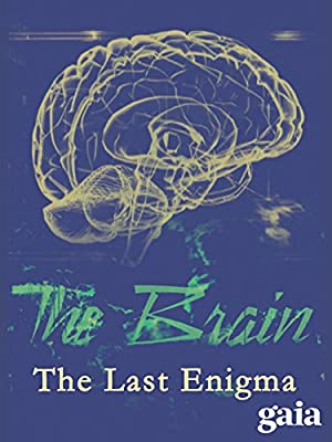 The Brain: The Last Enigma