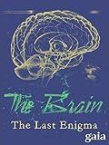 The Brain: The Last Enigma